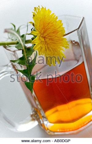 Tea with honey herbal healing tea - Stock Photo