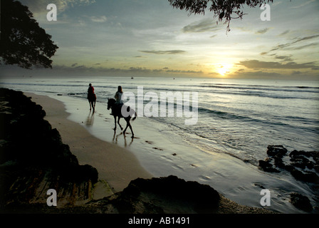 Horse riders on a beach at sunset on the west of Barbados - Stock Photo