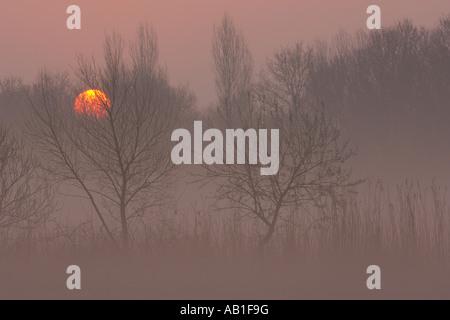 Sunrise over the Norfolk Broads Hickling Broad Norfolk England March