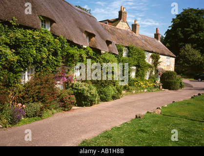 Isle of Wight Calbourne idyllic thatched cottages in Winkle Street - Stock Photo