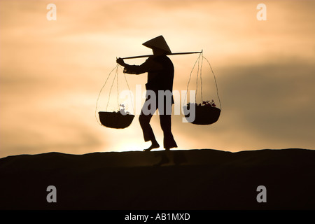 Woman with conical hat carries flowers in pannier baskets over sand dunes at sunrise near Mui Ne Vietnam - Stock Photo