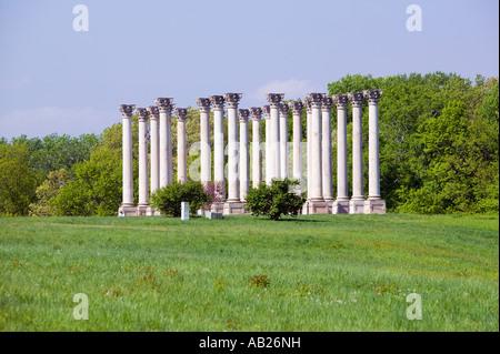 National Capitol Columns Corinthian columns in springtime at the United States National Arboretum Washington D C - Stock Photo