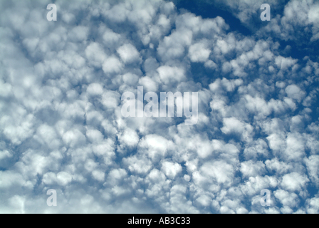 Beautiful Altocumulus Cloud Formation over Alsager in Cheshire England United Kingdom UK - Stock Photo