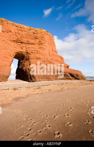 Langstone Rock, Dawlish, Devon - Stock Photo