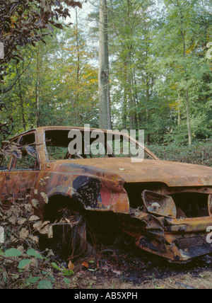 Burnt out car in woodland, Chiltern Hills near High Wycombe, Buckinghamshire, England, UK. - Stock Photo