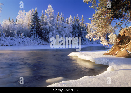 Dal River flowing past frost laden trees in Sweden in low winter light - Stock Photo