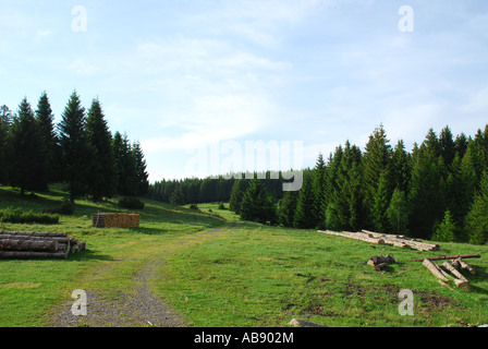 Landscape with hiking path southern Black Forest, Germany - Stock Photo