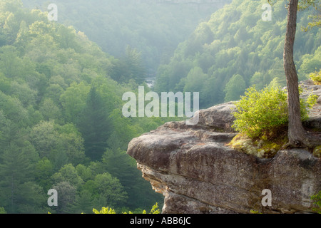 Scenic view of river gorge The Devils Breakfast Table Obed Wild annd Scenic River Tennessee - Stock Photo