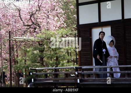 Traditional Japanese Wedding Couple and Cherry  Blossoms in Shin-en Garden inside Heian Shrine,  Kyoto, Japan - Stock Photo