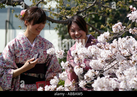 Two Traditionally Dressed Young Women Looking at Cherry Blossoms on Philosopher's Walk, Kyoto, Japan - Stock Photo