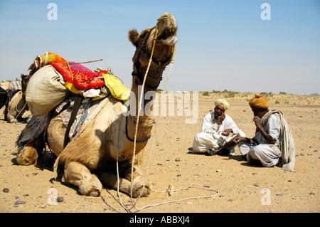 Camel trekking two camel men are sitting in the sand next to a lying packed camel Thar desert near Jaisalmer Rajasthan - Stock Photo
