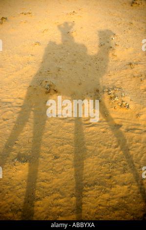 Camel trekking shadow of a rider on a camel in sand in Thar desert near Jaisalmer Rajasthan India - Stock Photo