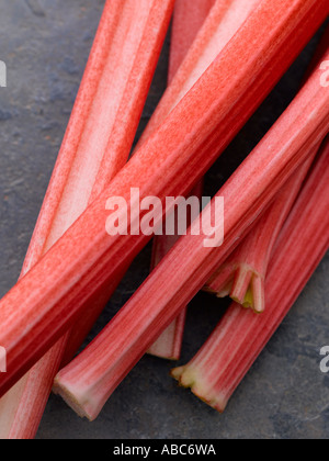 Rhubarb on slate background - high end Hasselblad 61mb digital image - Stock Photo