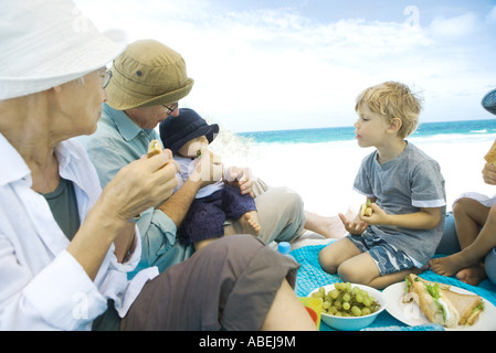 Grandparents and grandchildren having picnic on beach - Stock Photo