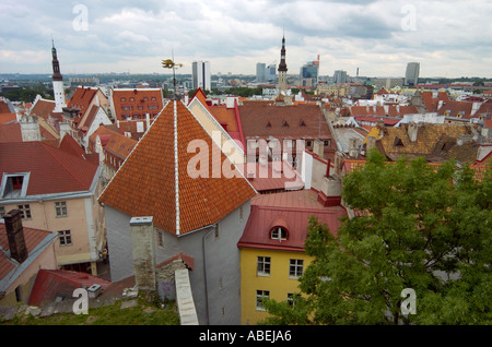 Tallinn overview in summer day - Stock Photo