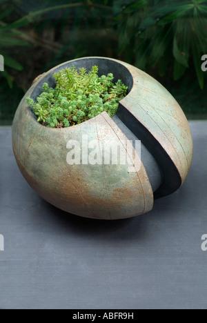 Gordon Cooke Garden Stoneware Pot Ceramic Pottery Unique