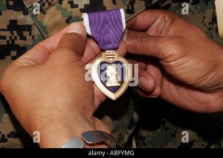 Purple Heart Award - Stock Photo