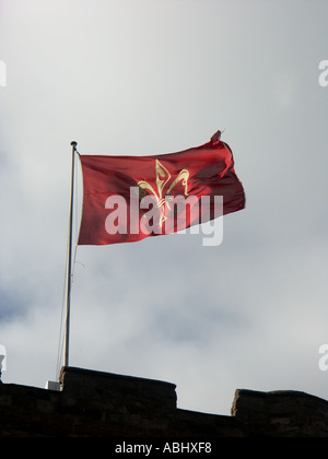 Flag Flying at Tamworth Castle. This design is the Seal of the Borough of Tamworth. - Stock Photo