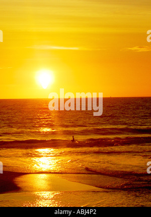 Yellow Sunset - Stock Photo
