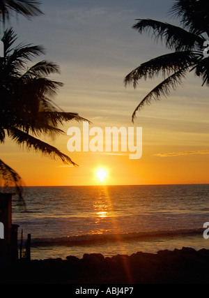 Sunset in Sri Lanka - Stock Photo