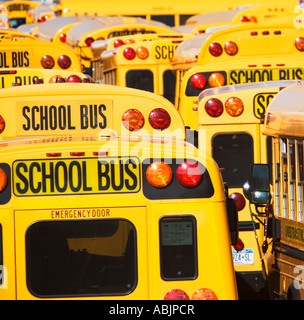 School buses parked in lines - Stock Photo