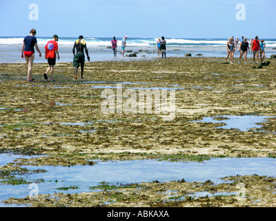 people tourists are walking on the riff reef at ebb tide low tide MOMBASA indian ocean blue sky water clear Kenya - Stock Photo