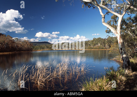 Landscape dominate by lake at Dunn's Swamp, part of the vast wilderness that is Australia's Wollemi National Park. - Stock Photo