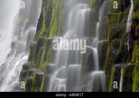 Proxy Falls, Three Sisters Wilderness, Willamette Forest, Oregon, USA - Stock Photo