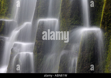 Proxy Falls, Three Sisters Wilderness, Willamette National Forest, Oregon, USA - Stock Photo