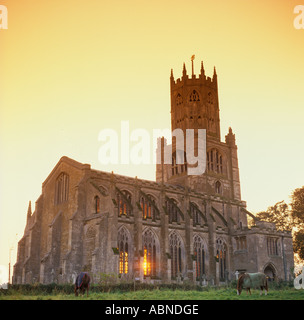 Northamptonshire Fotheringhay St Mary All Saints Church at sunset - Stock Photo