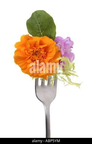 Edible flower salad on fork cut out on white background - Stock Photo