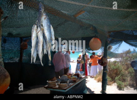 Dried fish or bokkoms a local delicacy in beach bar, Langebaan, Western Cape, South Africa - Stock Photo