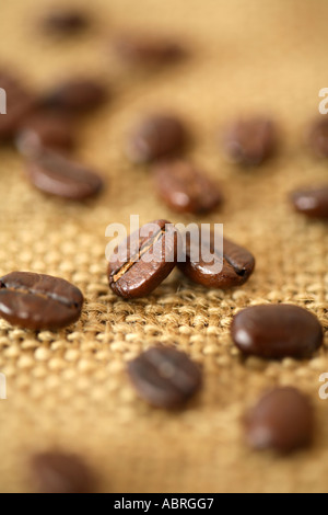 Coffee Beans on Burlap Surface - Stock Photo