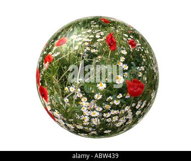 ENVIRONMENTAL CONCEPT: Our World - Stock Photo