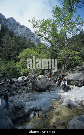 Greece Kreta Samaria Schlucht Ravine Gorge Valley - Stock Photo