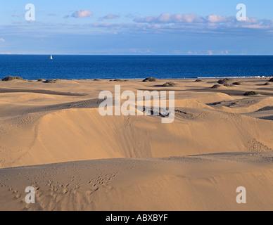 Spanien Spain Spanish Kanaren Kanarische Inseln Gran Canaria Canary Maspalomas Duene Duenen Dune Dunes - Stock Photo