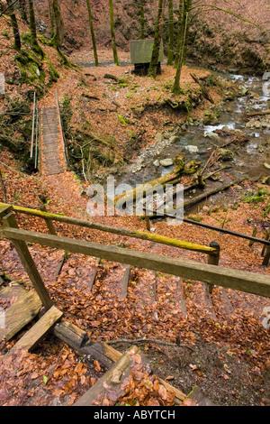 Downhill sidewalk in deep forest, 'Vrazji prolaz' (Devil 's pass) in Zeleni vir near Skrad in Croatia - Stock Photo
