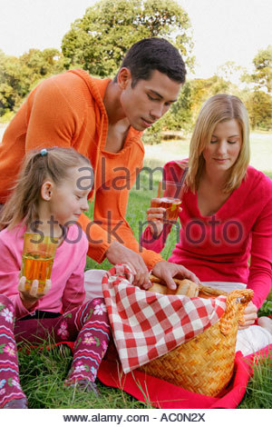 A father looking through a picnic basket - Stock Photo