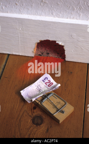 money placed on mousetrap instead of cheese outside mousehole in house - Stock Photo
