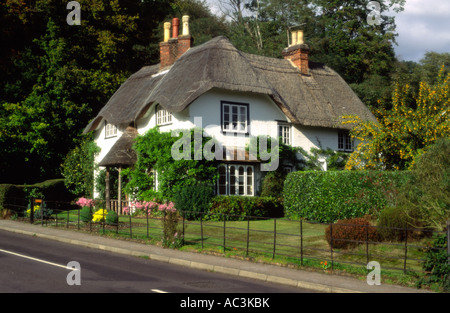 Beehive Cottage Swan Green Lyndhurst The New Forest Hampshire - Stock Photo