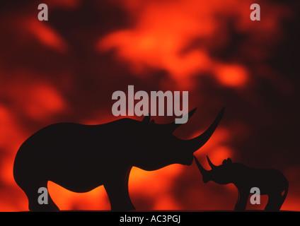 Wooden Rhinos Against Sunset still life set up (Medium Format) - Stock Photo