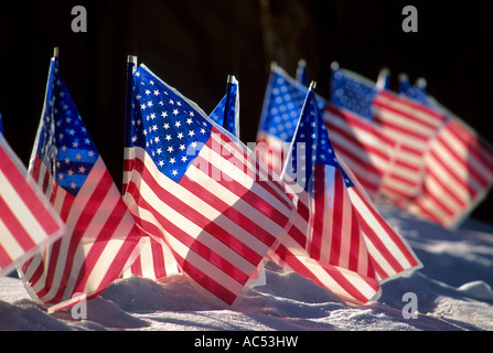 AMERICAN FLAGS IN THE SNOWY FRONT YARD OF A MINNESOTA HOME. WINTER. - Stock Photo