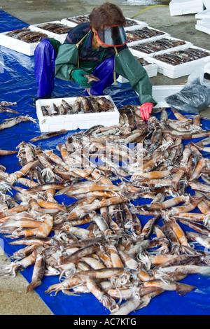 Korean woman packing squid on piers cheongjin fishing for Fishing piers near me