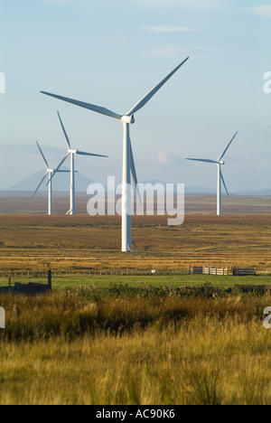dh Causeymire Wind Farms uk NPOWER ELECTRICITY CAITHNESS SCOTLAND Scottish Renewables farm RWE power Turbine windfarm turbines flow country UK