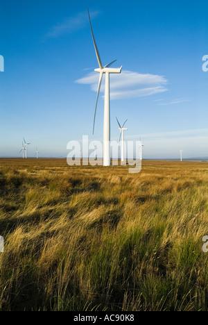 dh Causeymire Windfarm NPOWER ELECTRICITY CAITHNESS SCOTLAND Scottish RWE renewables National Wind farm Power Turbine Flow Country