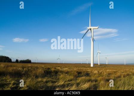 dh Causeymire Windfarm NPOWER ELECTRICITY CAITHNESS SCOTLAND RWE renewables National Wind Power Wind Turbine farm renewable flow country