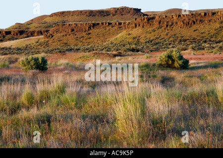 Desert meadows of the Palouse at sunset above Palouse Falls Palouse Falls State Park Washington - Stock Photo