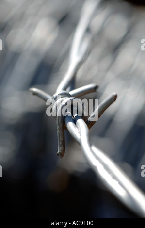 Close up of a roll of barbed wire fence - Stock Photo