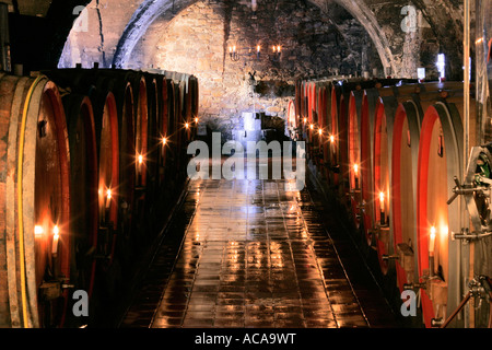 Wine cellar, Episcopal Winery in Ruedesheim, Diocese Limburg, Germany - Stock Photo