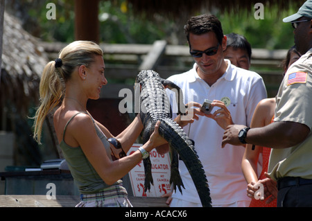 Tourist poses with young alligator Gator Park Miami in the Everglades National Park Florida USA - Stock Photo